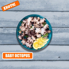 BABY OCTOPUS CLEANED1 kg